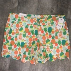 NWT Crown and Ivy scalloped Pineapple shorts